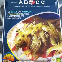 Damarfe na Revista ABCC